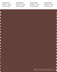 PANTONE SMART 19-1431X Color Swatch Card, Fudgesickle