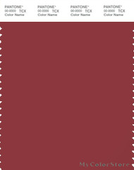 PANTONE SMART 19-1543X Color Swatch Card, Brick Red