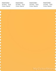 PANTONE SMART 13-1145TN Color Swatch Card, Orange Pop