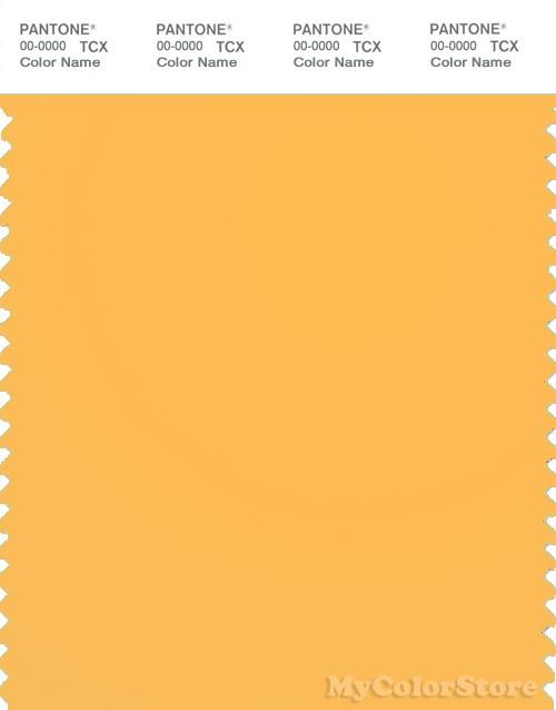 PANTONE SMART 13-1145TN Color Swatch Card, Orange Pop