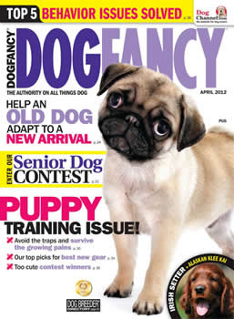 Dog Fancy Magazine Subscription (US) - 12 iss/yr