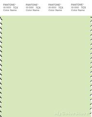 PANTONE SMART 12-0312X Color Swatch Card, Lime Cream