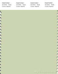 PANTONE SMART 12-0313X Color Swatch Card, Seafoam Green