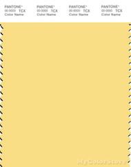 PANTONE SMART 12-0727X Color Swatch Card, Sunshine