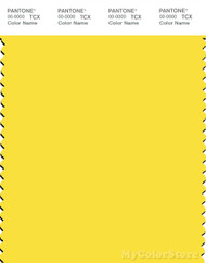 PANTONE SMART 12-0752X Color Swatch Card, Buttercup