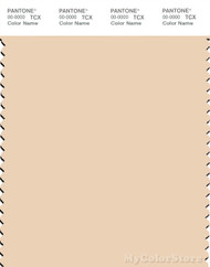 PANTONE SMART 12-0811X Color Swatch Card, Dawn