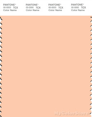 PANTONE SMART 12-0917X Color Swatch Card, Bleached  Apricot