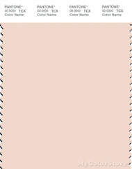 PANTONE SMART 12-1107X Color Swatch Card, Pink Champagne