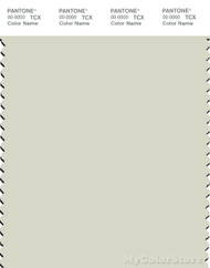 PANTONE SMART 12-6204X Color Swatch Card, Silver Green