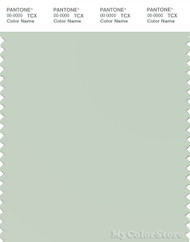 PANTONE SMART 13-0107X Color Swatch Card, Dewkist