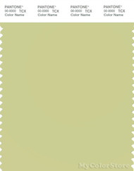 PANTONE SMART 13-0522X Color Swatch Card, Pale Green