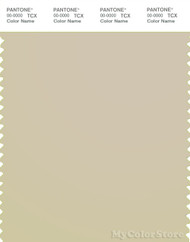 PANTONE SMART 13-0607X Color Swatch Card, Fog
