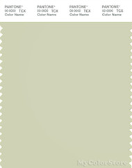 PANTONE SMART 13-0608X Color Swatch Card, Aloe Wash