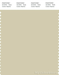PANTONE SMART 13-0611X Color Swatch Card, Moth