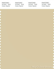 PANTONE SMART 13-0613X Color Swatch Card, Light Chartreuse