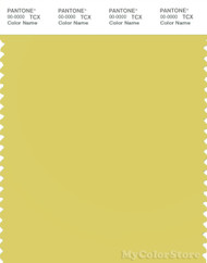PANTONE SMART 13-0640X Color Swatch Card, Acacia
