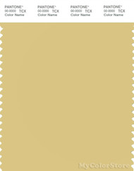 PANTONE SMART 13-0725X Color Swatch Card, Raffia