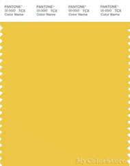 PANTONE SMART 13-0746X Color Swatch Card, Maize