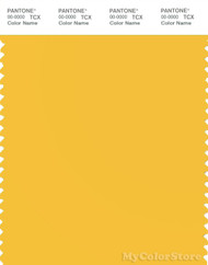 PANTONE SMART 13-0759X Color Swatch Card, Solar Power