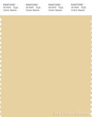PANTONE SMART 13-0917X Color Swatch Card, Italian Straw