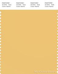 PANTONE SMART 13-0932X Color Swatch Card, Cornsilk