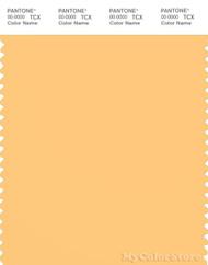 PANTONE SMART 13-0935X Color Swatch Card, Flax