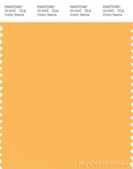 PANTONE SMART 13-0942X Color Swatch Card, Amber Yellow