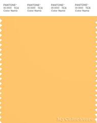PANTONE SMART 13-0945X Color Swatch Card, Pale Marigold