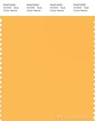 PANTONE SMART 13-0947X Color Swatch Card, Banana