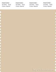 PANTONE SMART 13-1009X Color Swatch Card, Biscotti