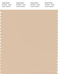 PANTONE SMART 13-1011X Color Swatch Card, Ivory Cream