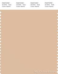 PANTONE SMART 13-1013X Color Swatch Card, Appleblossom