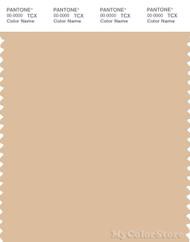 PANTONE SMART 13-1015X Color Swatch Card, Honey Peach