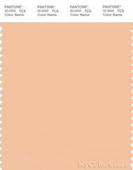 PANTONE SMART 13-1017X Color Swatch Card, Almond Cream