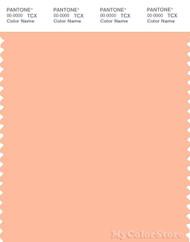 PANTONE SMART 13-1021X Color Swatch Card, Prairie Sunset