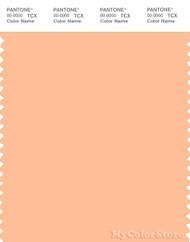 PANTONE SMART 13-1023X Color Swatch Card, Peach Fuzz