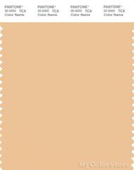 PANTONE SMART 13-1024X Color Swatch Card, Buff