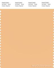 PANTONE SMART 13-1027X Color Swatch Card, Apricot Cream