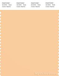 PANTONE SMART 13-1031X Color Swatch Card, Apricot Sherbert