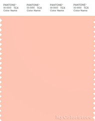 PANTONE SMART 13-1318X Color Swatch Card, Tropical Peach
