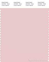 PANTONE SMART 13-2004X Color Swatch Card, Pinkish Gray