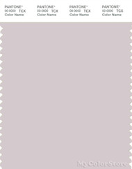 PANTONE SMART 13-3804X Color Swatch Card, Gray Lilac