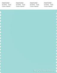 PANTONE SMART 13-4910X Color Swatch Card, Blue Tint