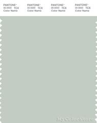 PANTONE SMART 13-5305X Color Swatch Card, Pale Aqua
