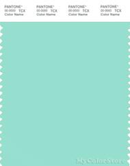 PANTONE SMART 13-5412X Color Swatch Card, Blue Green