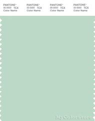 PANTONE SMART 13-6008X Color Swatch Card, Misty Jade