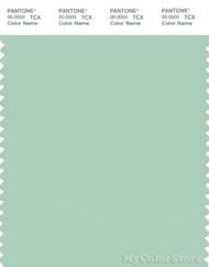 PANTONE SMART 13-6110X Color Swatch Card, Mist Green