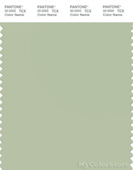 PANTONE SMART 14-0114X Color Swatch Card, Celadon Green