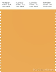 PANTONE SMART 14-0941X Color Swatch Card, Beeswax