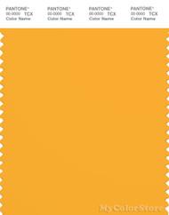 PANTONE SMART 14-0955X Color Swatch Card, Citrus